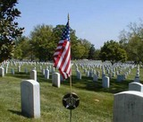 Grave_Marker__Stick_Flag_Arlington