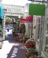 Sausalito Alley